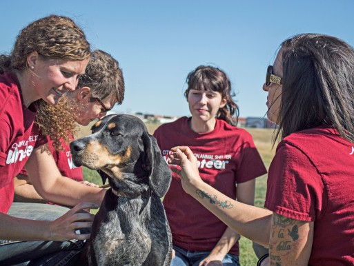 Volunteers with Boomer the Hound Dog - rescued in September 2015